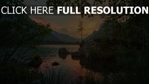 bäume steine fluss berg