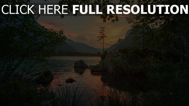 hd hintergrundbilder bäume steine fluss berg