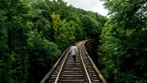 mann gehen eisenbahn bäume