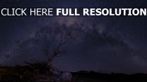 sterne himmel nacht sternenhimmel baum
