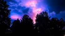 gewitter bäume nacht himmel