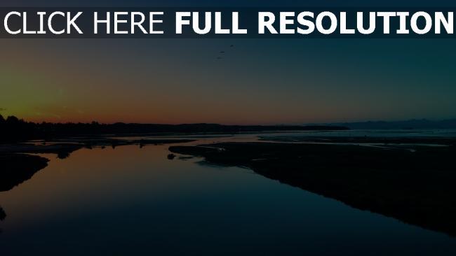 hd hintergrundbilder vögel ufer meer sonnenuntergang