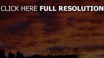 himmel wolken sonnenuntergang