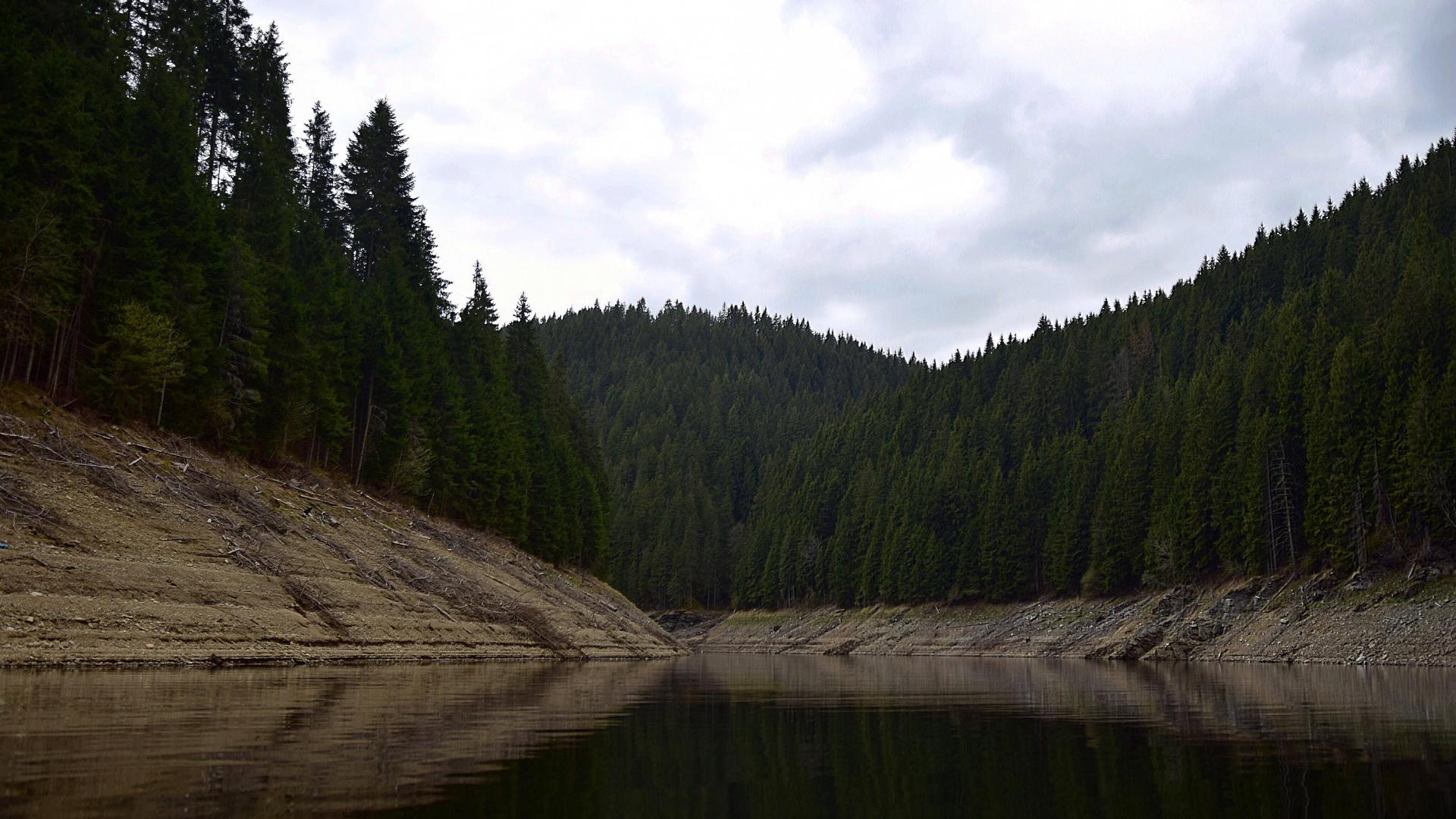 hd hintergrundbilder see bäume wald 1920x1080