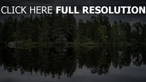 see bäume reflexion