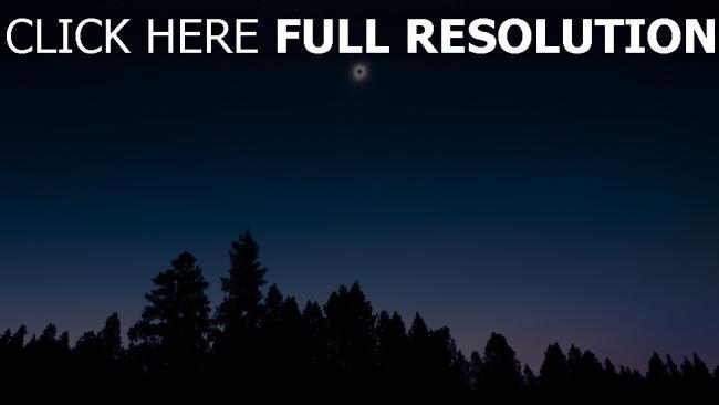 hd hintergrundbilder himmel nacht bäume