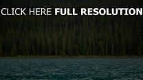 oberfläche fluss bäume wasser