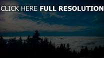 bäume wolken himmel