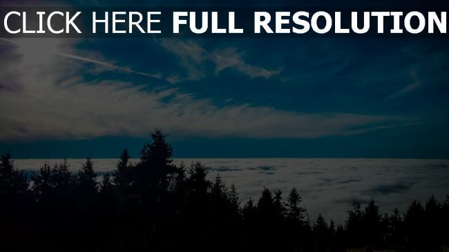 hd hintergrundbilder bäume wolken himmel