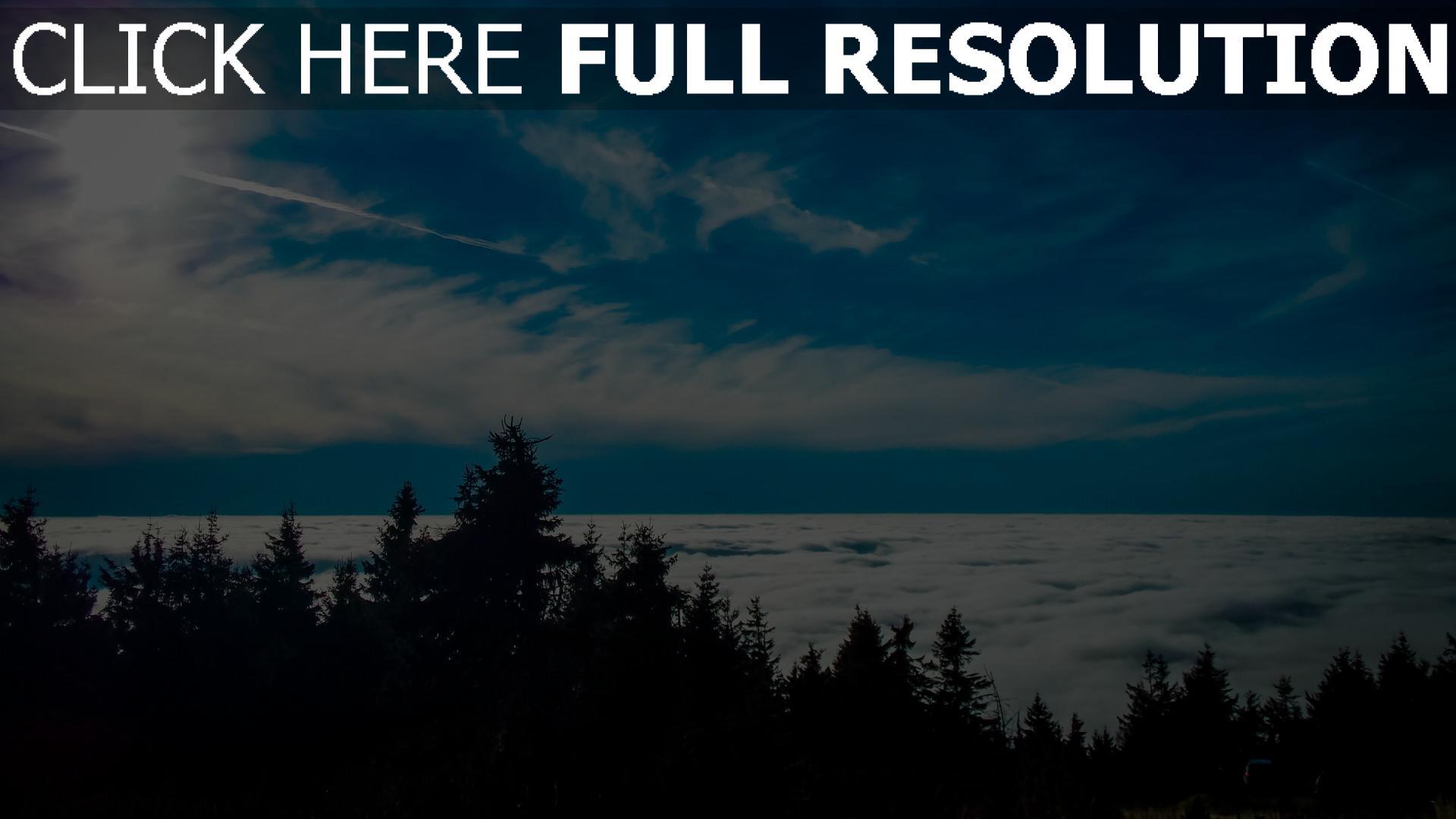 hd hintergrundbilder bäume wolken himmel 1920x1080