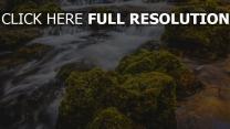 wasserfall fluss moos steine
