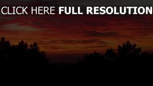 sonnenuntergang himmel wolken bäume