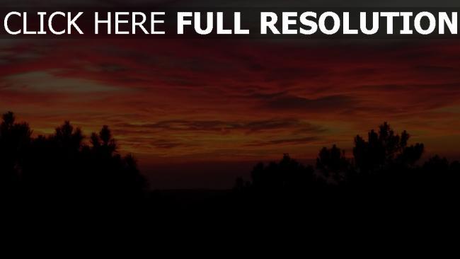 hd hintergrundbilder sonnenuntergang himmel wolken bäume