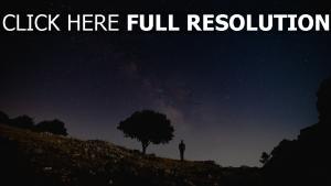 baum nacht silhouette sternenhimmel