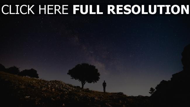 hd hintergrundbilder baum nacht silhouette sternenhimmel