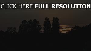 abend nacht bäume himmel
