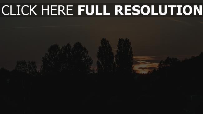 hd hintergrundbilder abend nacht bäume himmel
