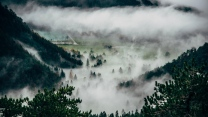 nebel gipfel bäume berge