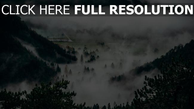 hd hintergrundbilder nebel gipfel bäume berge