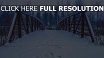 brücke spuren schnee winter