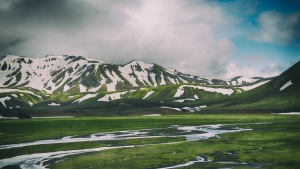 berge landmannalaugar island gras