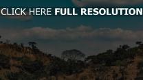bäume wolken afrika hügel
