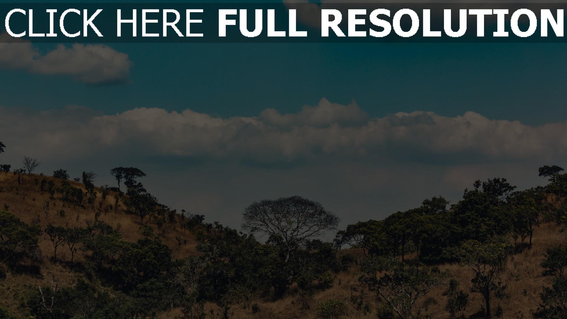 hd hintergrundbilder bäume wolken afrika hügel 1920x1080