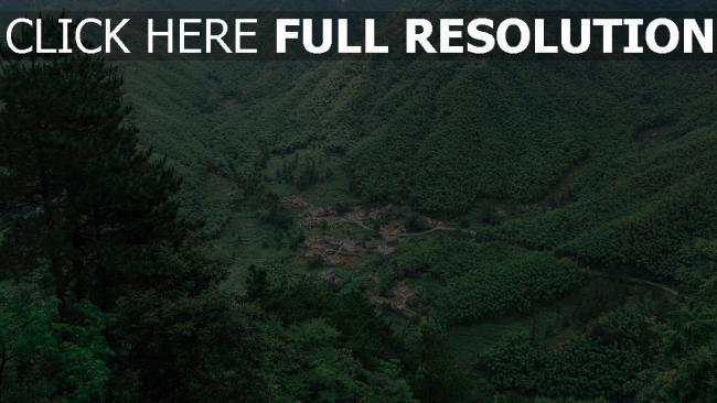 hd hintergrundbilder bäume berge ansicht von oben