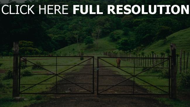 hd hintergrundbilder pferdestall gras weide bäume tor