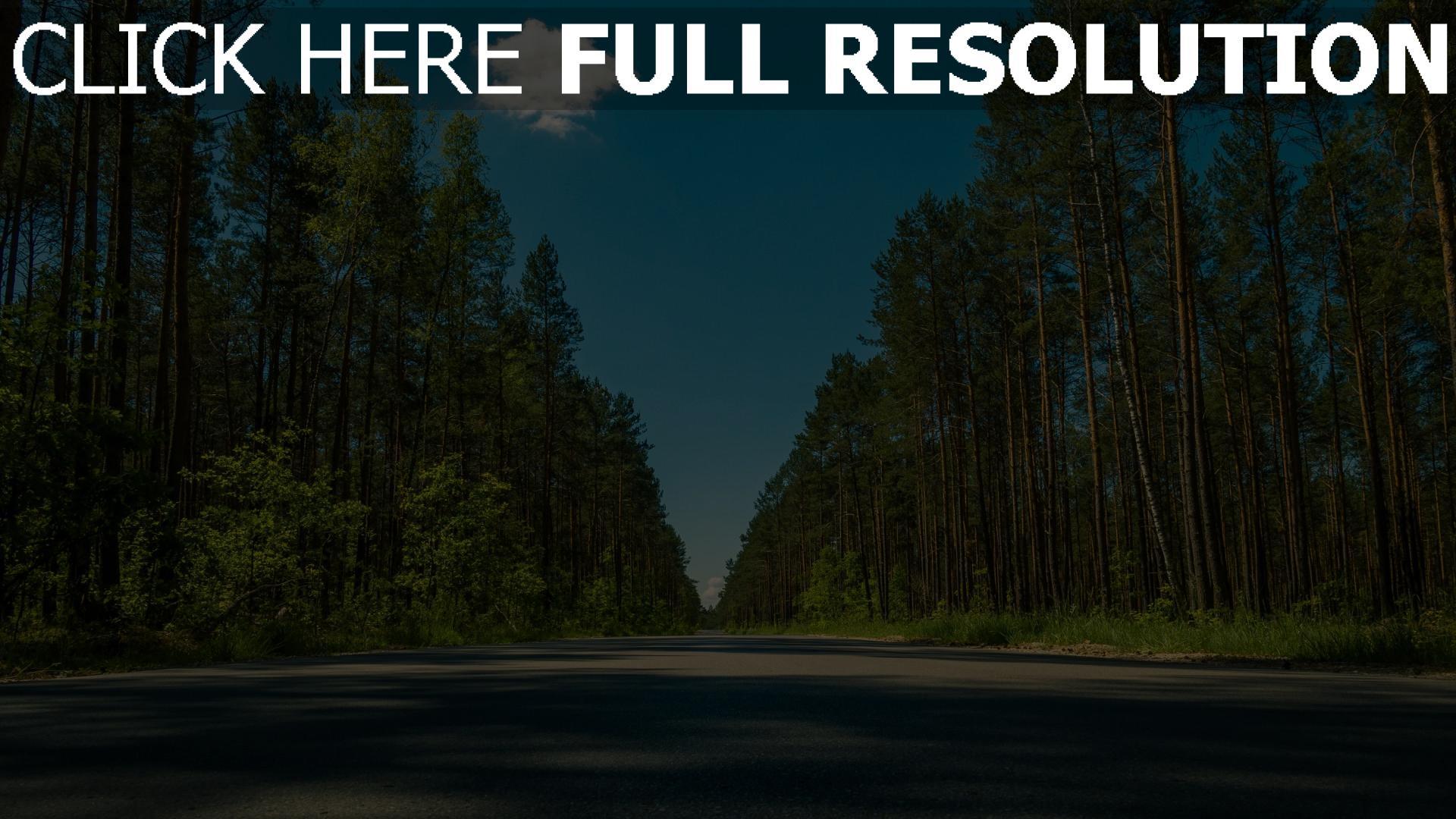 hd hintergrundbilder bäume straße sommer 1920x1080