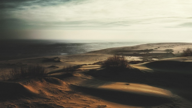hd hintergrundbilder gras sand wüste