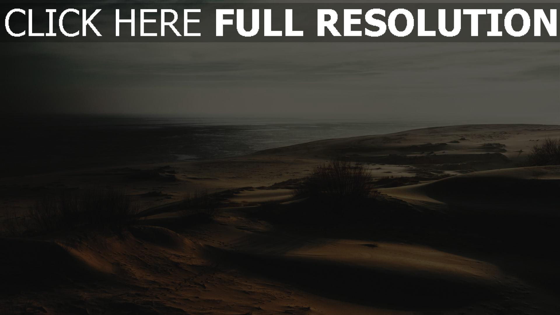 hd hintergrundbilder gras sand wüste 1920x1080