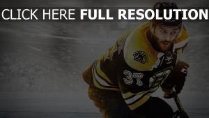 patrice bergeron nhl 15 hockey spiel