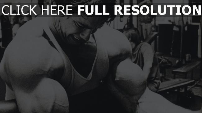 hd hintergrundbilder arnold schwarzenegger junge bodybuilding schauspieler
