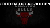 chicago bulls sport basketball logo