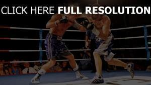 boxer ring boxen kampf
