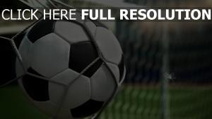 fußball ball netz gate feder