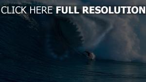 welle wellenreiten hai zähne