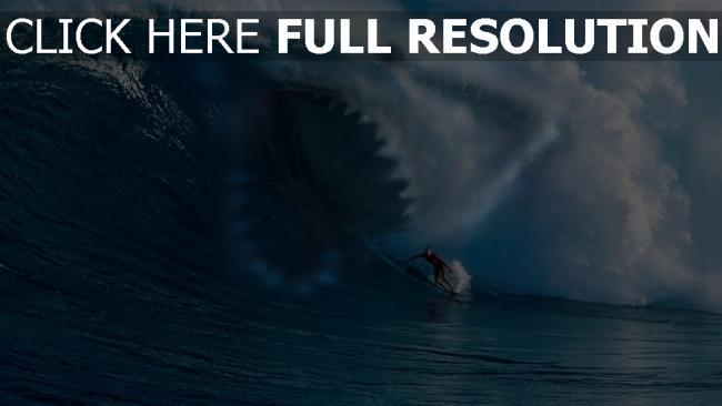 hd hintergrundbilder welle wellenreiten hai zähne