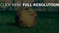 rasen gras fußball feld