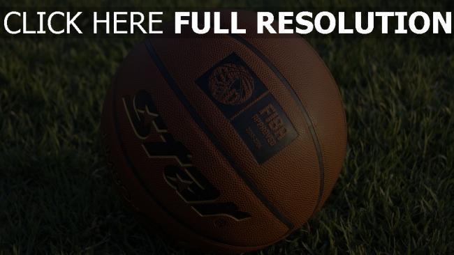 hd hintergrundbilder basketball-ball gras basketball ball