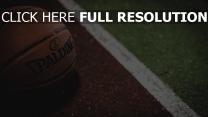 basketball basketball-ball spalding