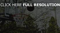 basketball ring wurf ball