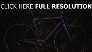 fahrrad büsche sport