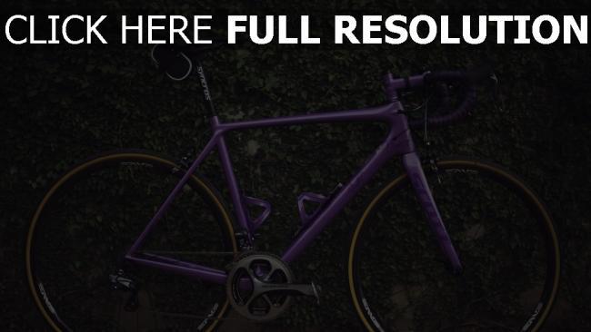 hd hintergrundbilder fahrrad büsche sport