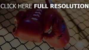 boxen boxhandschuhe kampf