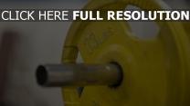 gewichtheben fitness scheibenhantel