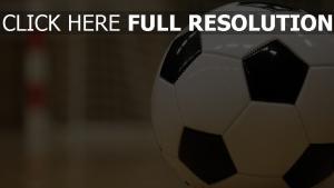 tor fußball sport