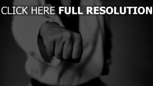 taekwondo kämpfer schwarz-weiß faust kampf