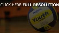 ball sport volleyball